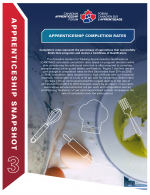 LMI Snapshot – Apprenticeship Completion Rates